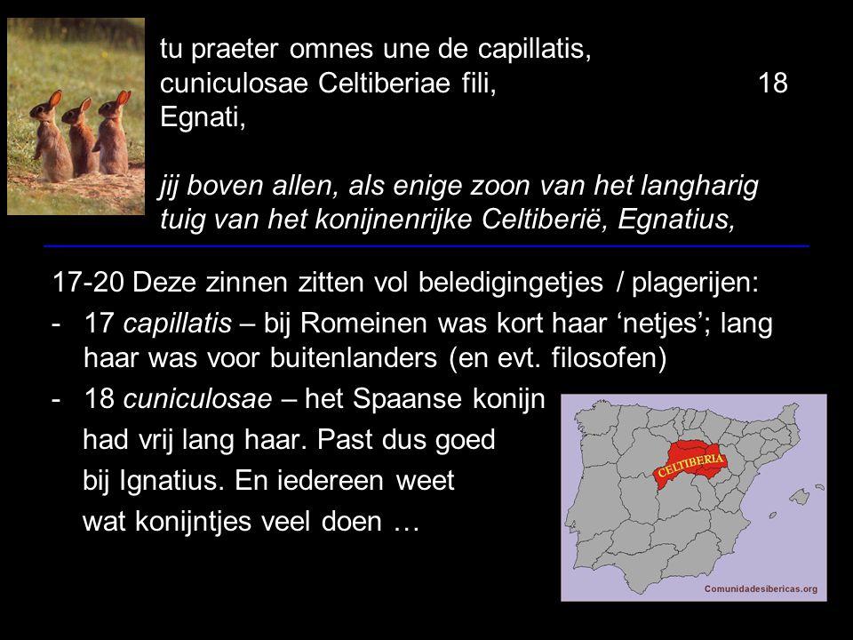 tu praeter omnes une de capillatis, cuniculosae Celtiberiae fili,18 Egnati, jij boven allen, als enige zoon van het langharig tuig van het konijnenrijke Celtiberië, Egnatius, 17-20 Deze zinnen zitten vol beledigingetjes / plagerijen: -17 capillatis – bij Romeinen was kort haar 'netjes'; lang haar was voor buitenlanders (en evt.
