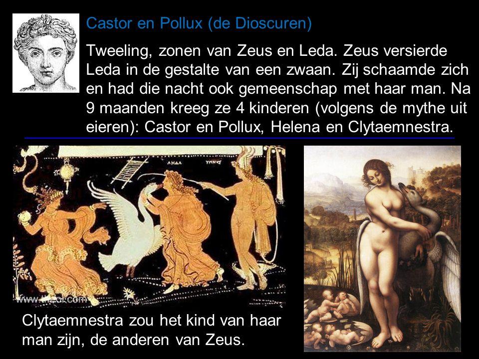 De pilleati fratres Op Romeinse afbeeldingen dragen Castor en Pollux vaak vilten mutsen (pillei)