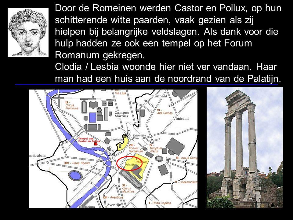 Door de Romeinen werden Castor en Pollux, op hun schitterende witte paarden, vaak gezien als zij hielpen bij belangrijke veldslagen.