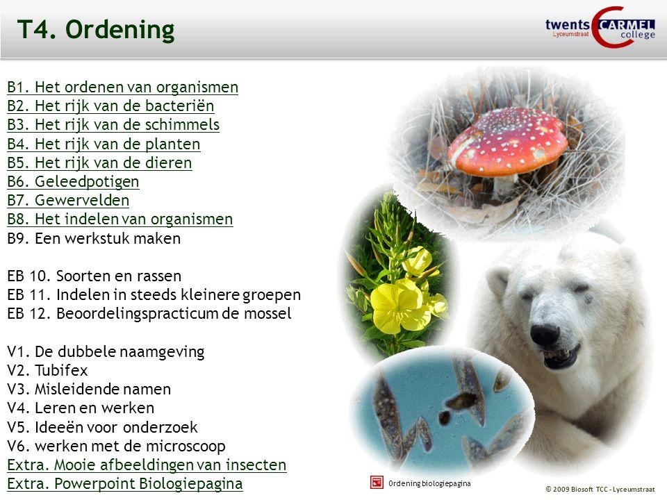 © 2009 Biosoft TCC - Lyceumstraat Ordening