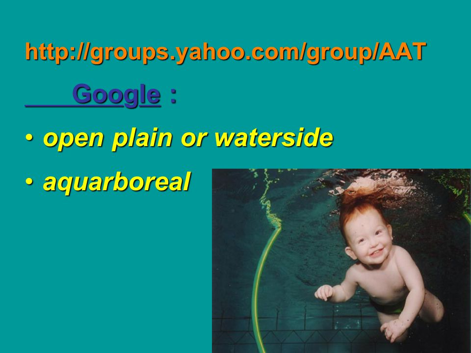 http://groups.yahoo.com/group/AAT Google : open plain or watersideopen plain or waterside aquarborealaquarboreal