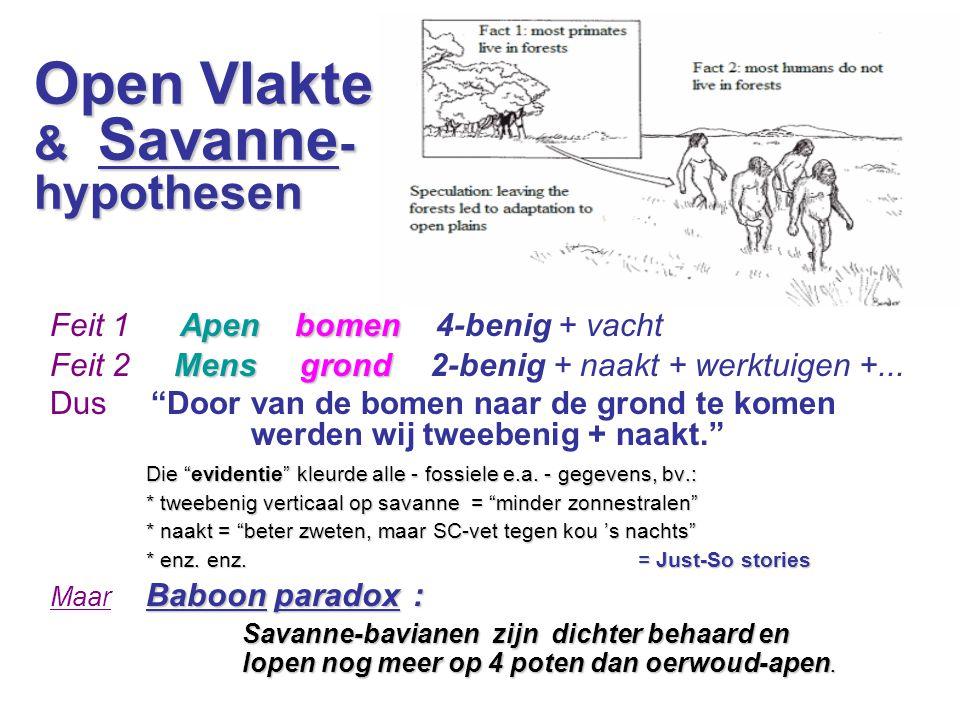 Savanna-dieren  Mens  vetlaag   water-zoogdieren  muziek   boom- & water-dieren  handig   aap, otter, wasbeer...