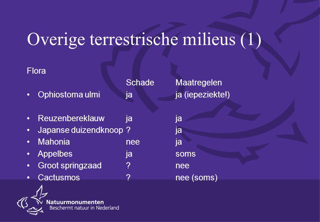 Overige terrestrische milieus (1) Flora SchadeMaatregelen Ophiostoma ulmi jaja (iepeziekte!) Reuzenbereklauwjaja Japanse duizendknoop ?ja Mahonia neeja Appelbes jasoms Groot springzaad ?nee Cactusmos?nee (soms)