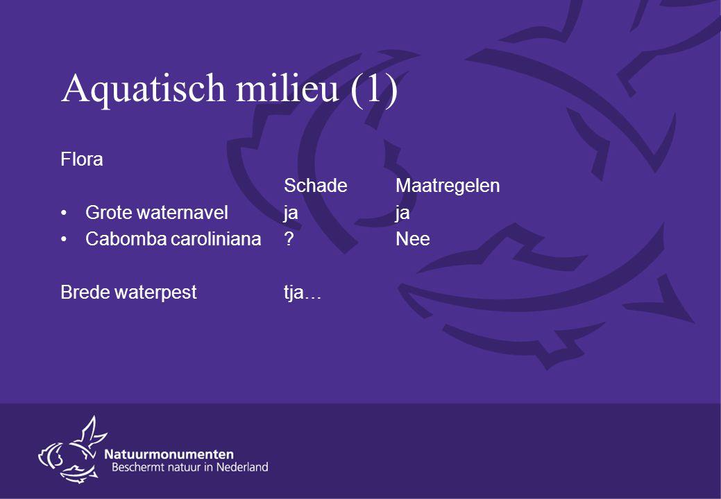Aquatisch milieu (1) Flora SchadeMaatregelen Grote waternavel jaja Cabomba caroliniana Nee Brede waterpesttja…