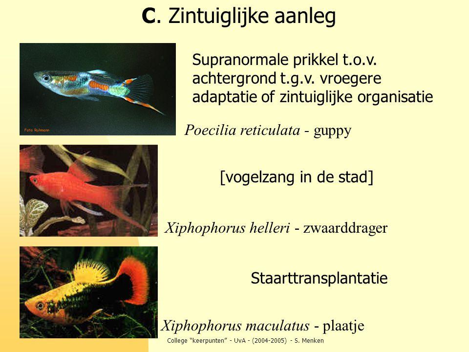College keerpunten - UvA - (2004-2005) - S.Menken Supranormale prikkel t.o.v.