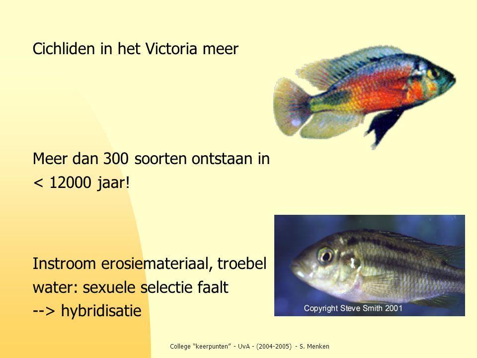 """College """"keerpunten"""" - UvA - (2004-2005) - S. Menken Cichliden in het Victoria meer Meer dan 300 soorten ontstaan in < 12000 jaar! Instroom erosiemate"""