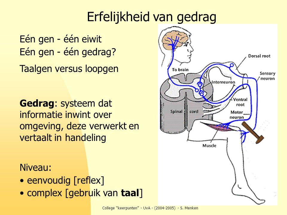"""College """"keerpunten"""" - UvA - (2004-2005) - S. Menken Eén gen - één eiwit Eén gen - één gedrag? Taalgen versus loopgen Gedrag: systeem dat informatie i"""