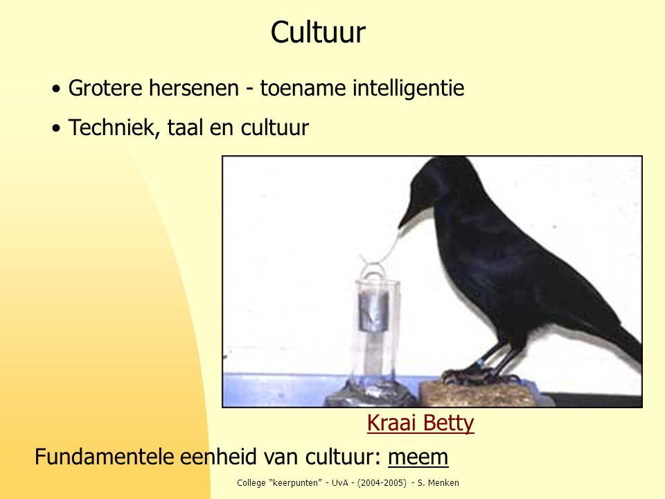 """College """"keerpunten"""" - UvA - (2004-2005) - S. Menken Cultuur Grotere hersenen - toename intelligentie Techniek, taal en cultuur Kraai Betty Fundamente"""