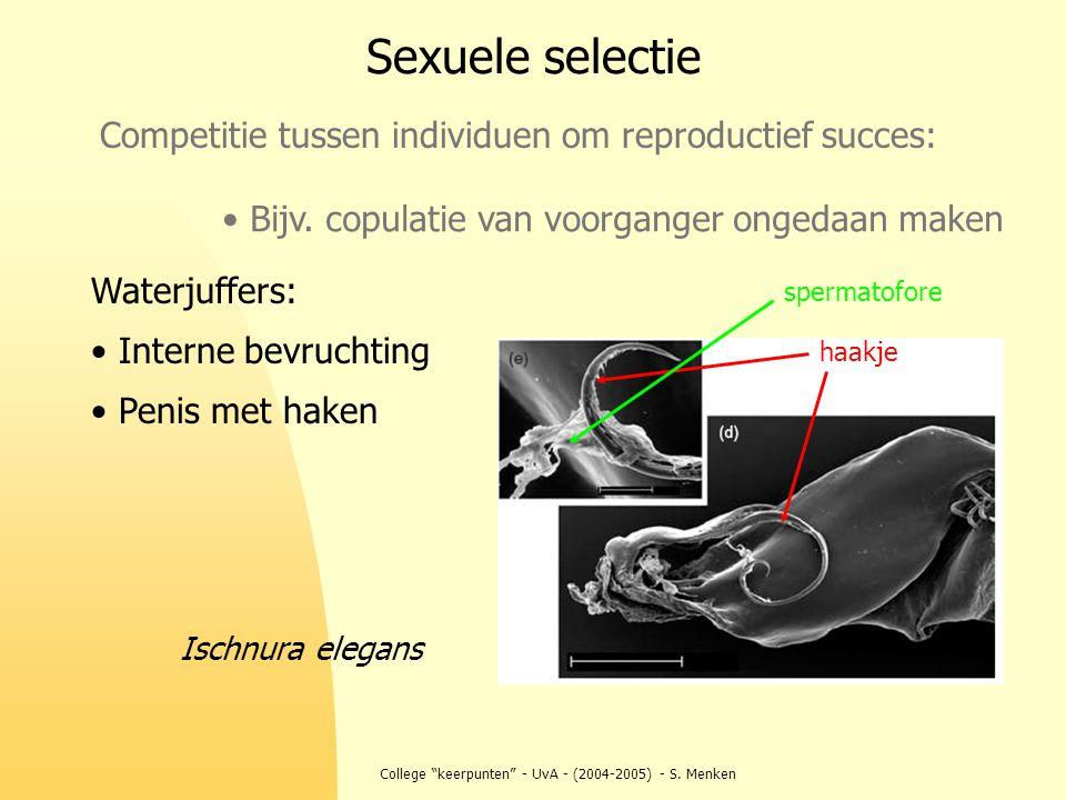 """College """"keerpunten"""" - UvA - (2004-2005) - S. Menken Competitie tussen individuen om reproductief succes: Sexuele selectie Bijv. copulatie van voorgan"""