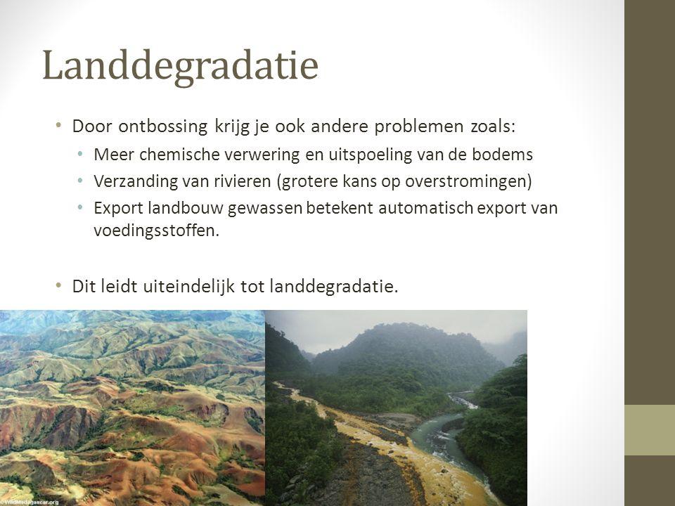 Landdegradatie Door ontbossing krijg je ook andere problemen zoals: Meer chemische verwering en uitspoeling van de bodems Verzanding van rivieren (gro