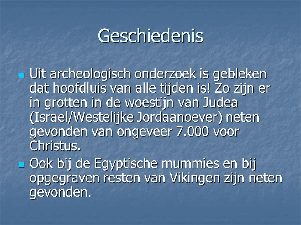 Geschiedenis Uit archeologisch onderzoek is gebleken dat hoofdluis van alle tijden is! Zo zijn er in grotten in de woestijn van Judea (Israel/Westelij