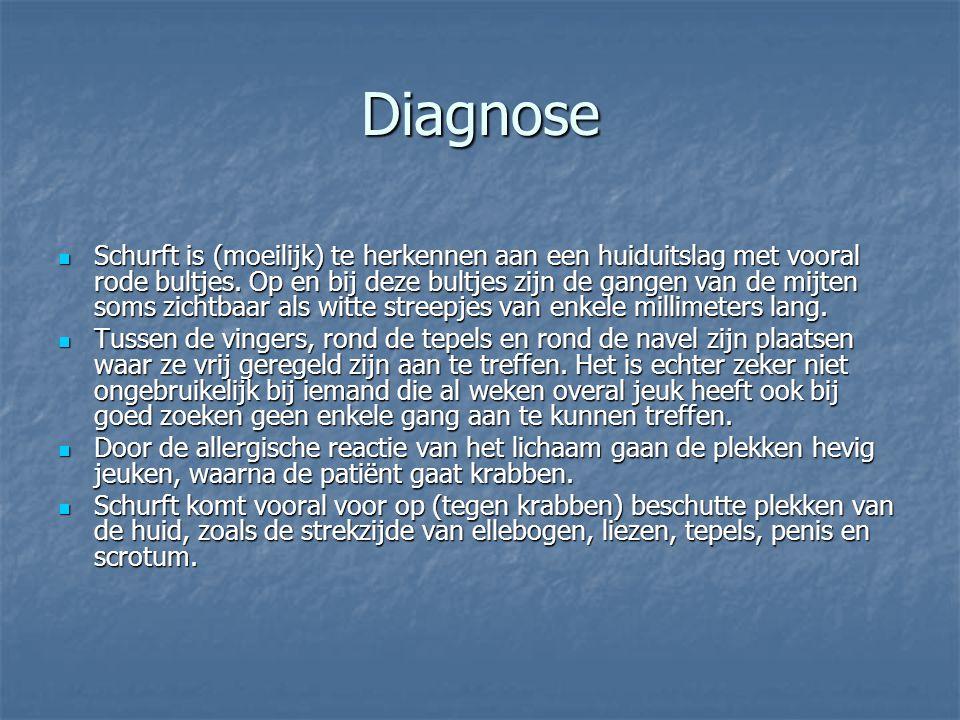 Diagnose Schurft is (moeilijk) te herkennen aan een huiduitslag met vooral rode bultjes. Op en bij deze bultjes zijn de gangen van de mijten soms zich
