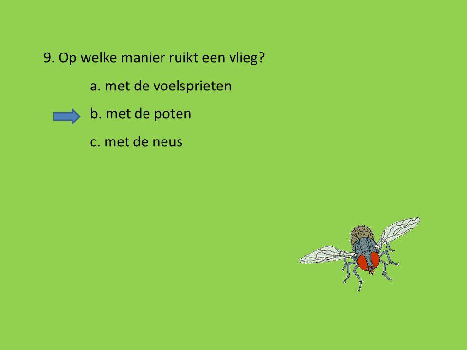 8. Is er een verschil in aantal poten tussen een spin en een insect? a. ja, een spin heeft twee poten minder dan een insect b. ja, een spin heeft twee