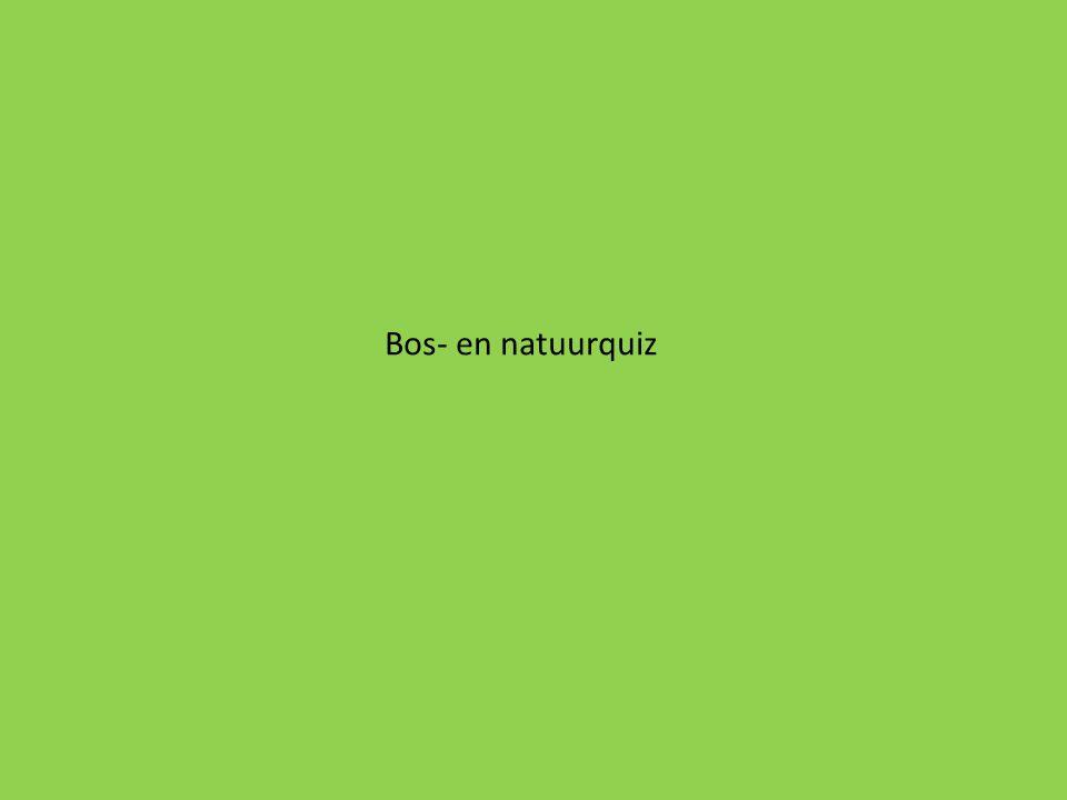 Bos- en natuurquiz