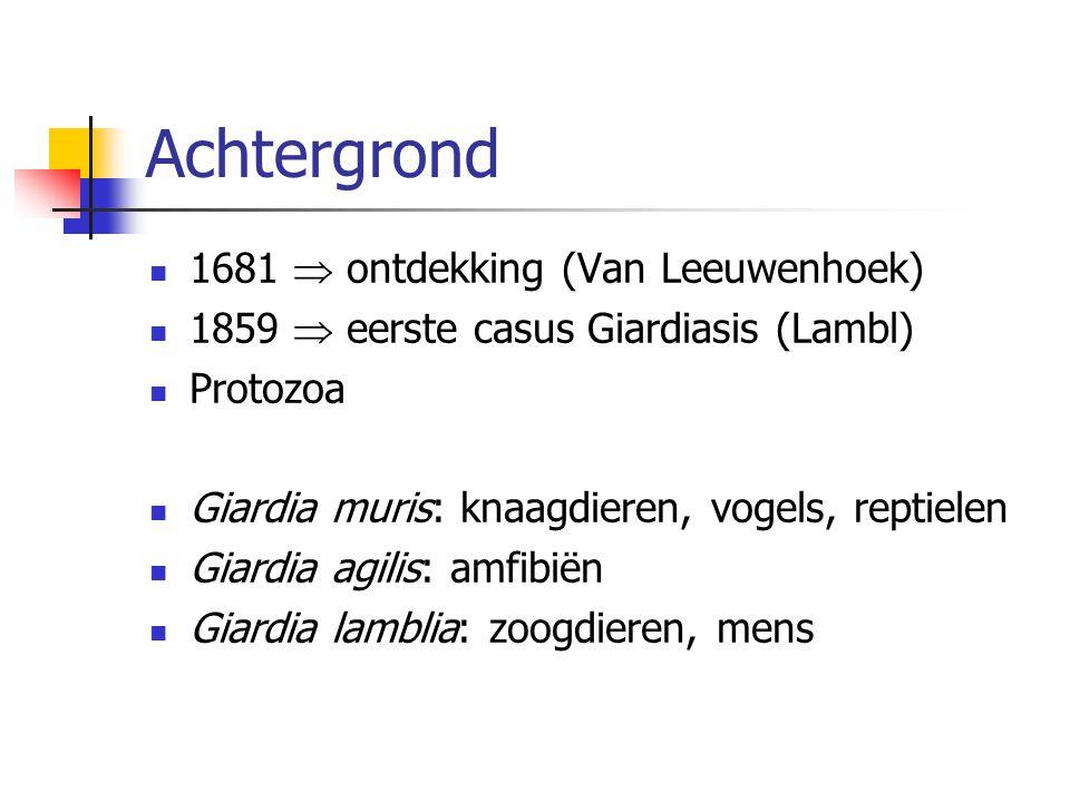 Achtergrond 1681  ontdekking (Van Leeuwenhoek) 1859  eerste casus Giardiasis (Lambl) Protozoa Giardia muris: knaagdieren, vogels, reptielen Giardia
