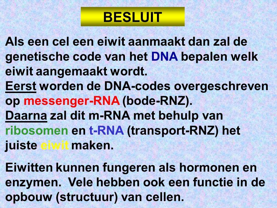 Als een cel een eiwit aanmaakt dan zal de genetische code van het DNA bepalen welk eiwit aangemaakt wordt.