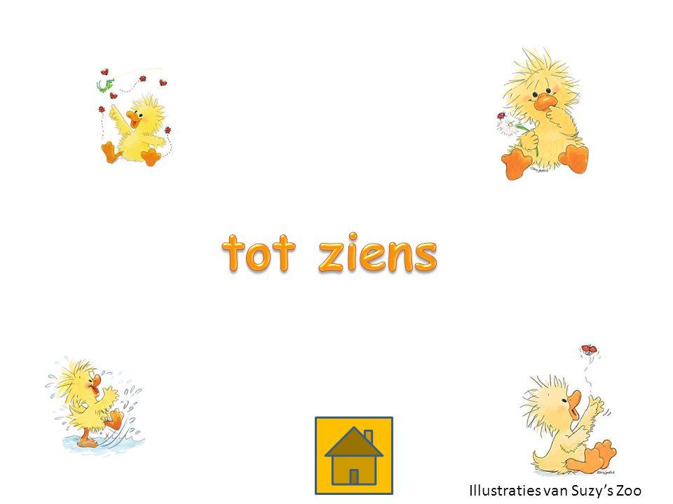 Illustraties van Suzy's Zoo