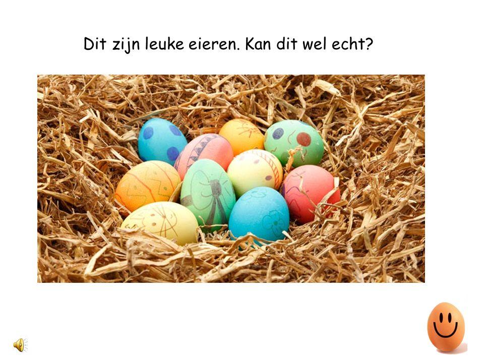Dit zijn leuke eieren. Kan dit wel echt?