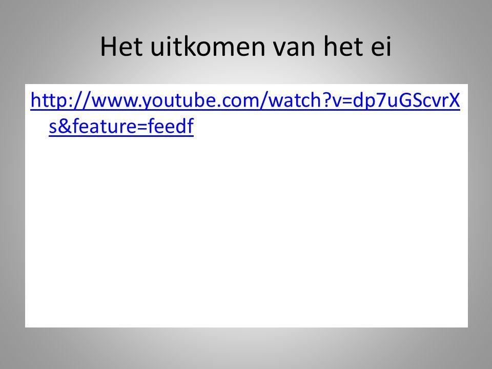 Het uitkomen van het ei http://www.youtube.com/watch?v=dp7uGScvrX s&feature=feedf