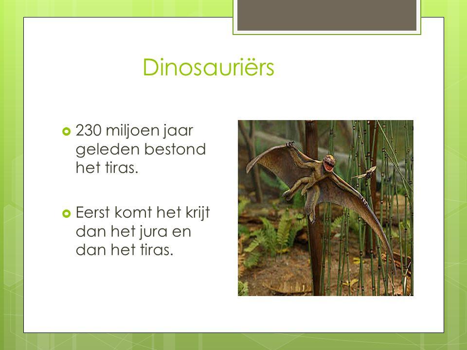 Dinosauriërs  meteorietinslag  alleen vogeldino's overleefden.  China en Argentinië  werden veel fossielen gevonden.