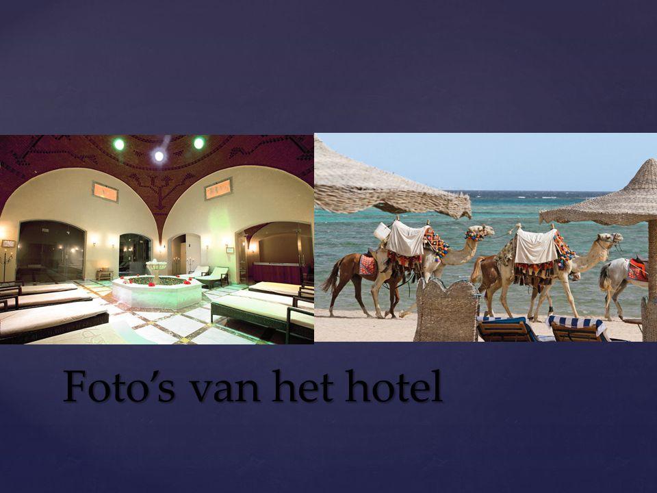 Activiteiten ξZondag 10/03: Activiteiten aan hotel.