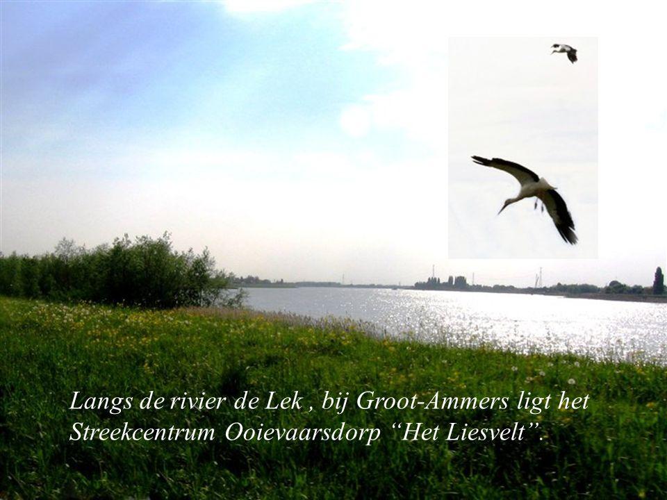 Langs Langs de rivier de Lek, bij Groot-Ammers ligt het Streekcentrum Ooievaarsdorp Het Liesvelt .