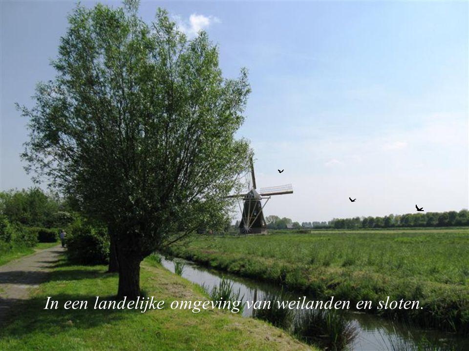 """Langs Langs de rivier de Lek, bij Groot-Ammers ligt het Streekcentrum Ooievaarsdorp """"Het Liesvelt""""."""