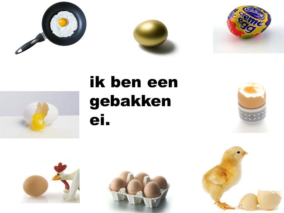 ik ben een gebakken ei.