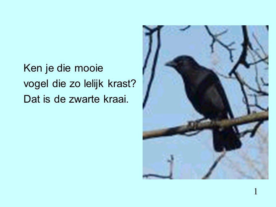 Ken je die mooie vogel die zo lelijk krast Dat is de zwarte kraai. 1