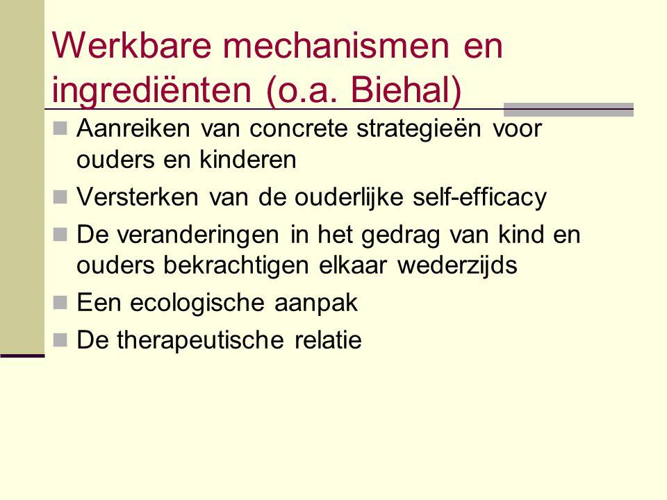 Werkbare mechanismen en ingrediënten (o.a. Biehal) Aanreiken van concrete strategieën voor ouders en kinderen Versterken van de ouderlijke self-effica