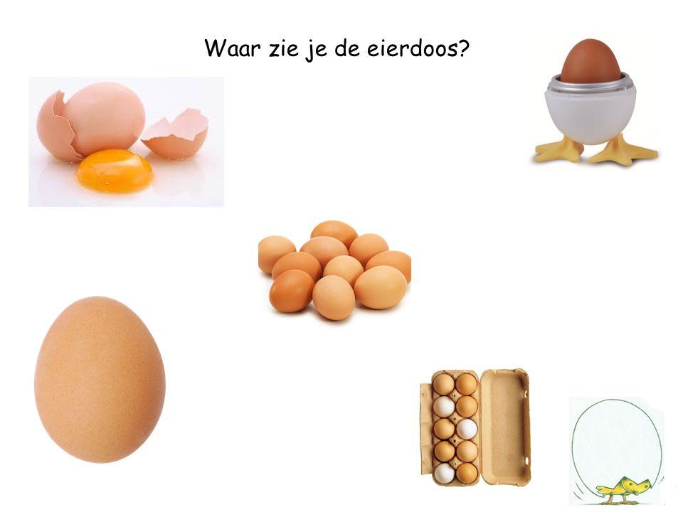 Waar zie je het ei?