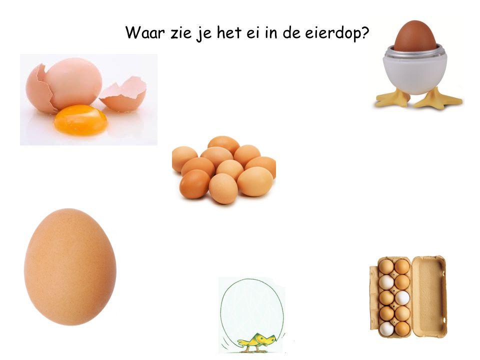 Waar zie je de eieren?