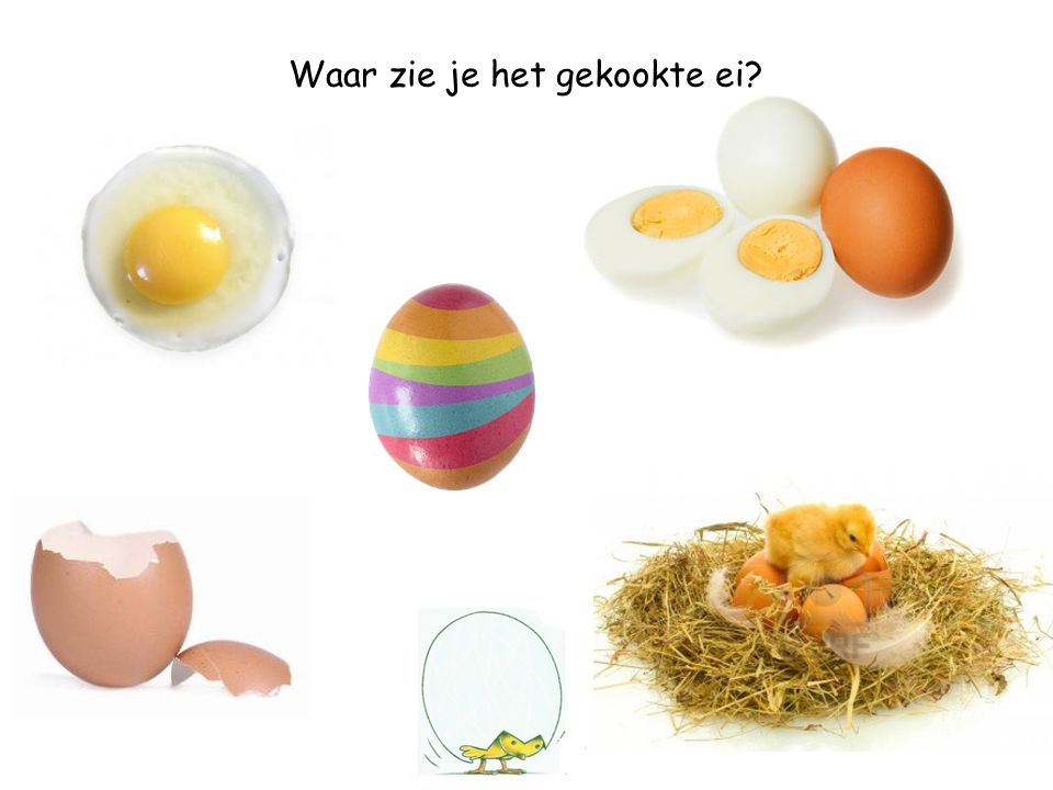 Waar zie je het gebroken ei?