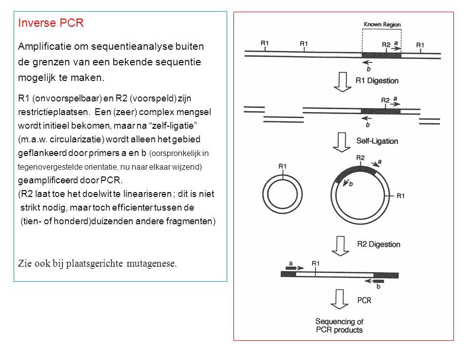 Inverse PCR Amplificatie om sequentieanalyse buiten de grenzen van een bekende sequentie mogelijk te maken.