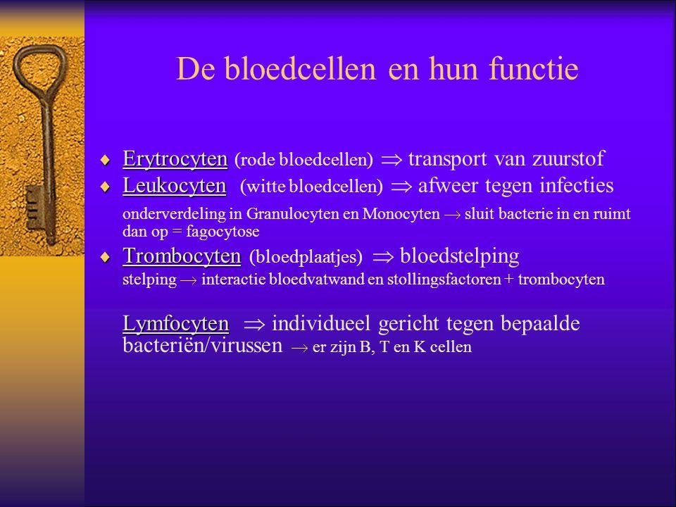 De bloedcellen en hun functie  Erytrocyten  Erytrocyten (rode bloedcellen)  transport van zuurstof  Leukocyten  Leukocyten (witte bloedcellen) 