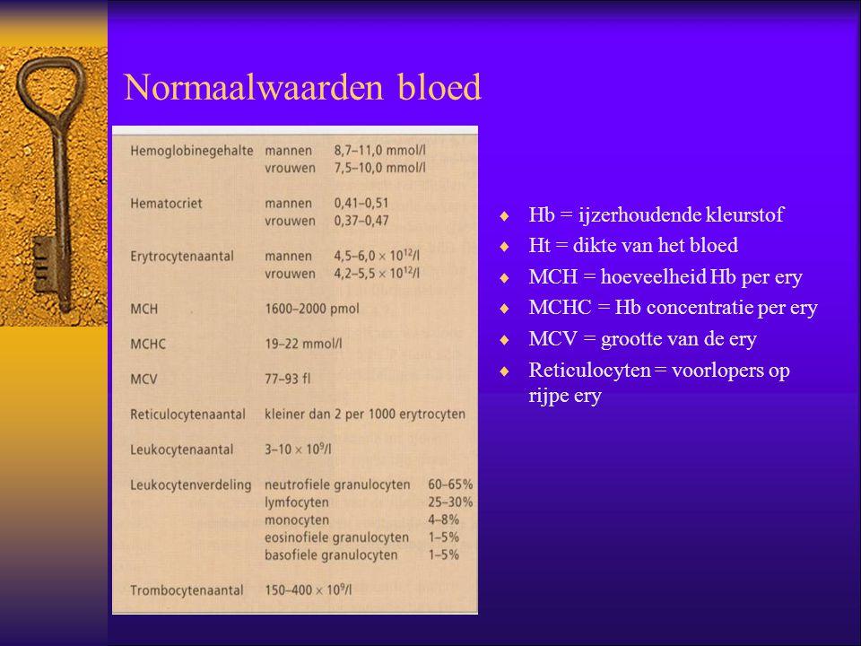 Normaalwaarden bloed  Hb = ijzerhoudende kleurstof  Ht = dikte van het bloed  MCH = hoeveelheid Hb per ery  MCHC = Hb concentratie per ery  MCV =