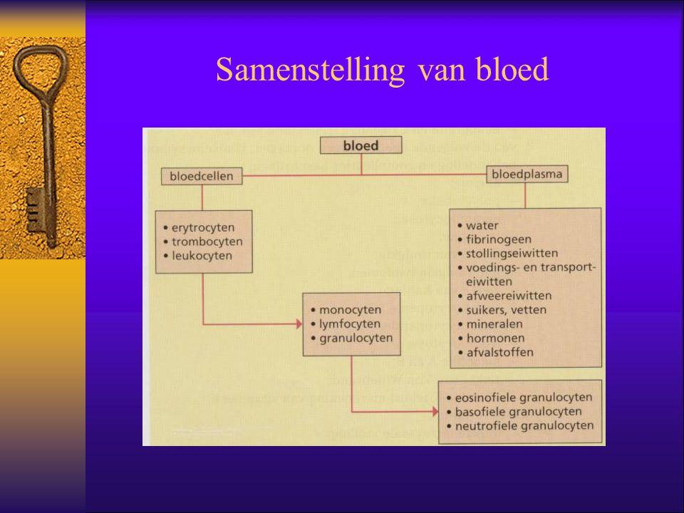 Normaalwaarden bloed  Hb = ijzerhoudende kleurstof  Ht = dikte van het bloed  MCH = hoeveelheid Hb per ery  MCHC = Hb concentratie per ery  MCV = grootte van de ery  Reticulocyten = voorlopers op rijpe ery