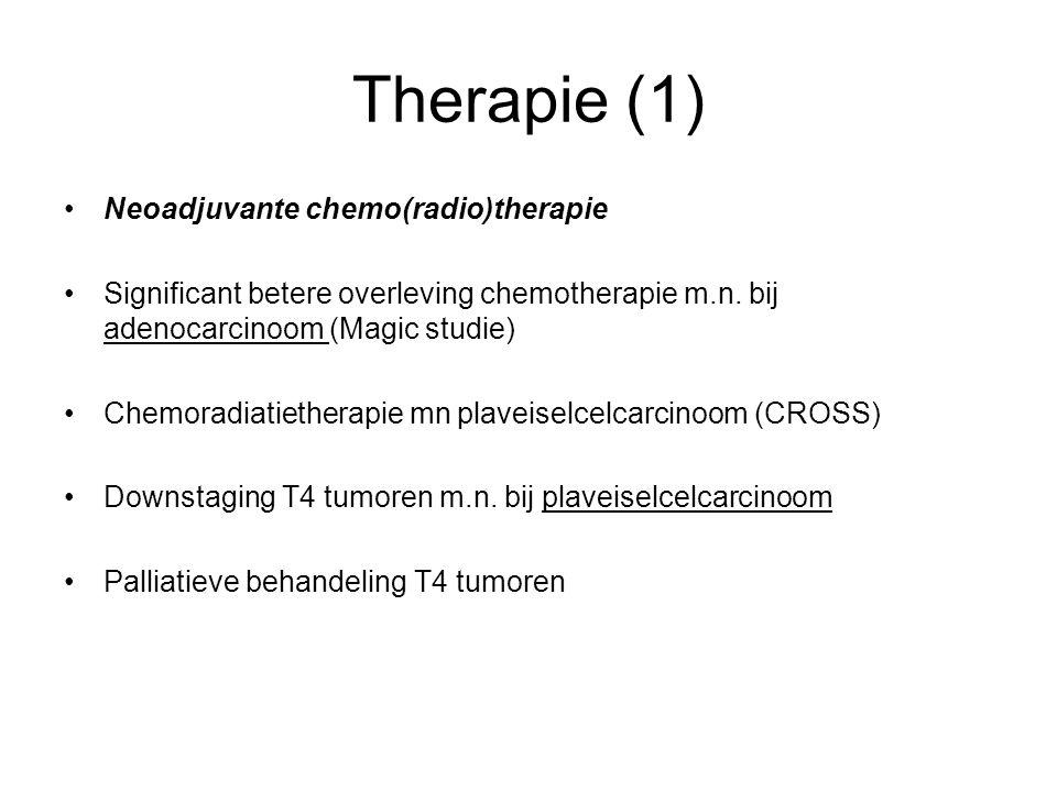 Therapie (1) Neoadjuvante chemo(radio)therapie Significant betere overleving chemotherapie m.n. bij adenocarcinoom (Magic studie) Chemoradiatietherapi