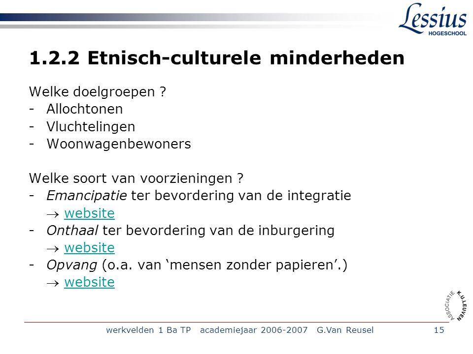 werkvelden 1 Ba TP academiejaar 2006-2007 G.Van Reusel15 1.2.2 Etnisch-culturele minderheden Welke doelgroepen .