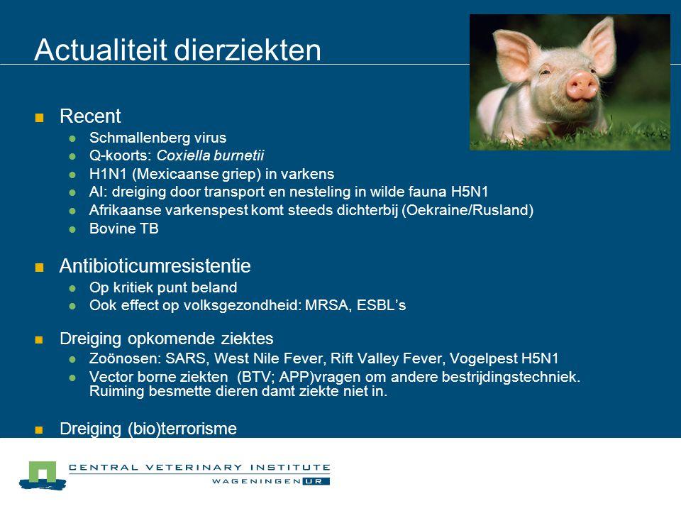 Actualiteit dierziekten Recent Schmallenberg virus Q-koorts: Coxiella burnetii H1N1 (Mexicaanse griep) in varkens AI: dreiging door transport en neste