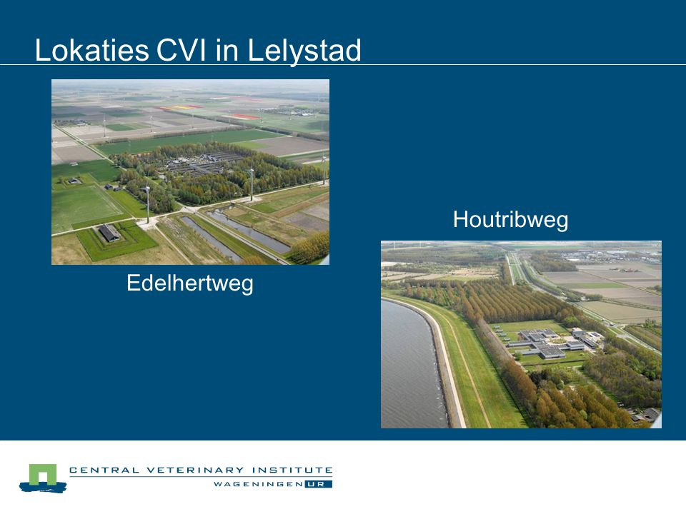 Lokaties CVI in Lelystad Edelhertweg Houtribweg