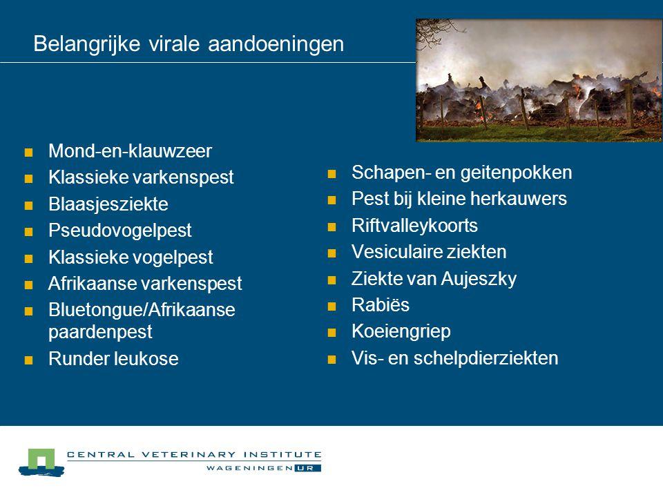 Belangrijke virale aandoeningen Mond-en-klauwzeer Klassieke varkenspest Blaasjesziekte Pseudovogelpest Klassieke vogelpest Afrikaanse varkenspest Blue