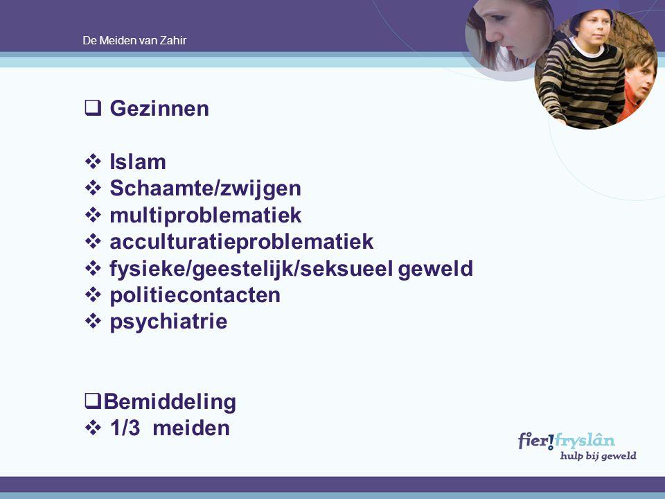 De Meiden van Zahir  Gezinnen  Islam  Schaamte/zwijgen  multiproblematiek  acculturatieproblematiek  fysieke/geestelijk/seksueel geweld  politi