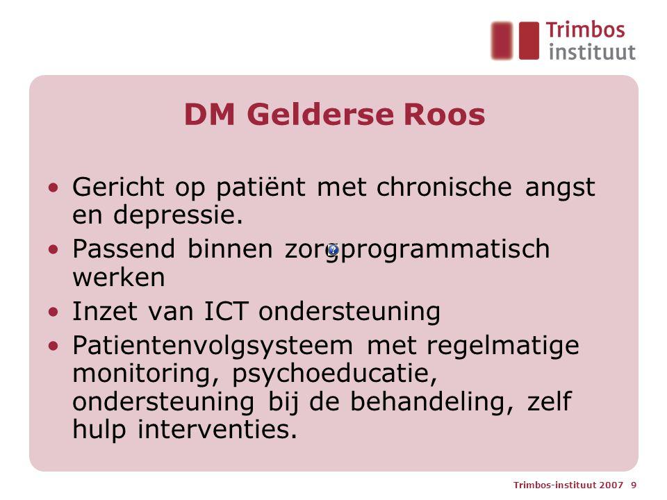 Trimbos-instituut 2007 9 DM Gelderse Roos Gericht op patiënt met chronische angst en depressie. Passend binnen zorgprogrammatisch werken Inzet van ICT