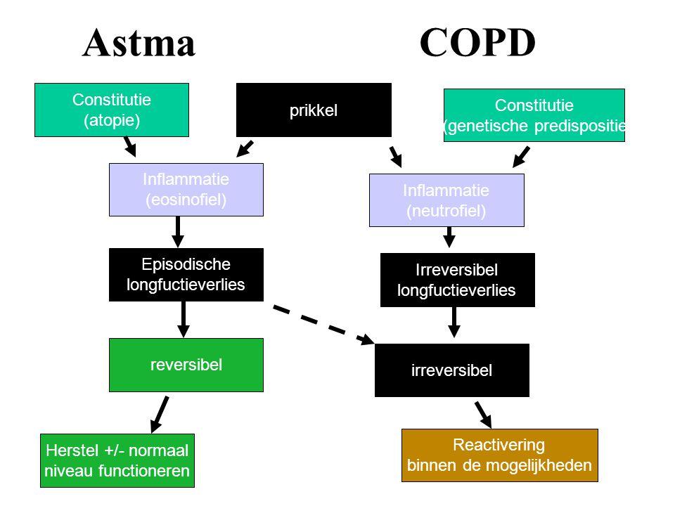 AstmaCOPD Constitutie (atopie) Inflammatie (neutrofiel) prikkel Constitutie (genetische predispositie Episodische longfuctieverlies Irreversibel longf