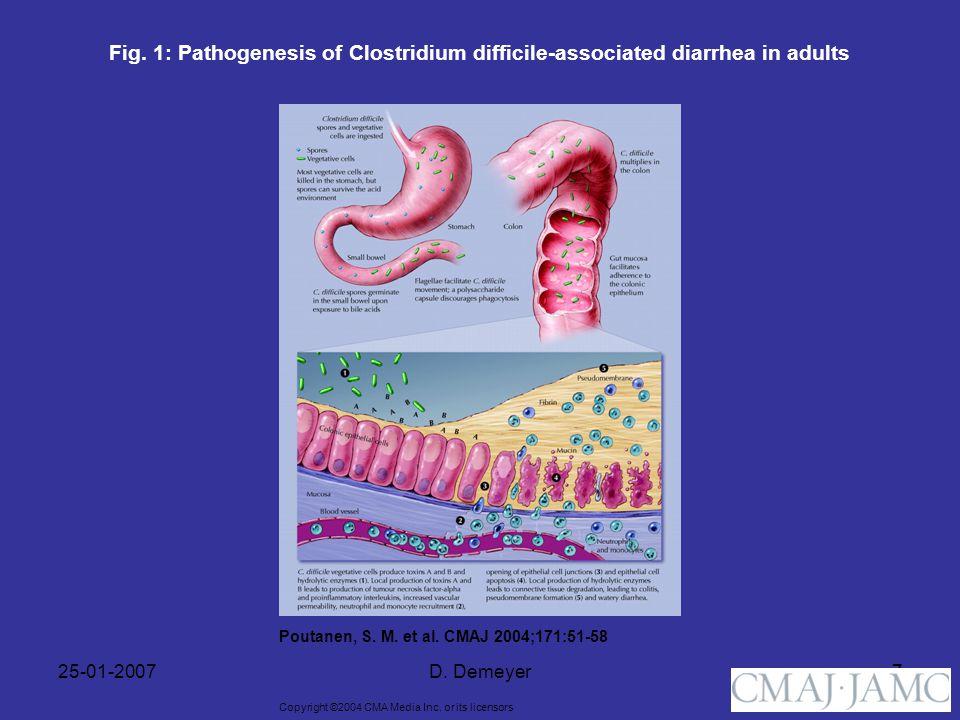 25-01-2007D. Demeyer7 Copyright ©2004 CMA Media Inc. or its licensors Poutanen, S. M. et al. CMAJ 2004;171:51-58 Fig. 1: Pathogenesis of Clostridium d