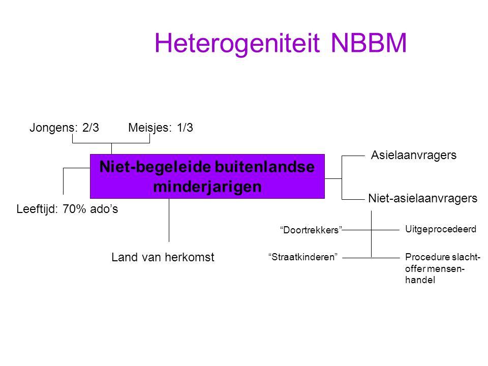 Heterogeniteit NBBM Niet-begeleide buitenlandse minderjarigen Niet-asielaanvragers Asielaanvragers Jongens: 2/3Meisjes: 1/3 Leeftijd: 70% ado's Land v