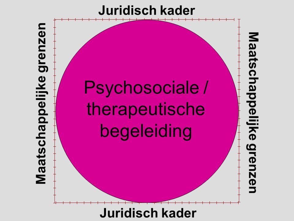 Juridisch kader Maatschappelijke grenzen Juridisch kader Psychosociale / therapeutische begeleiding