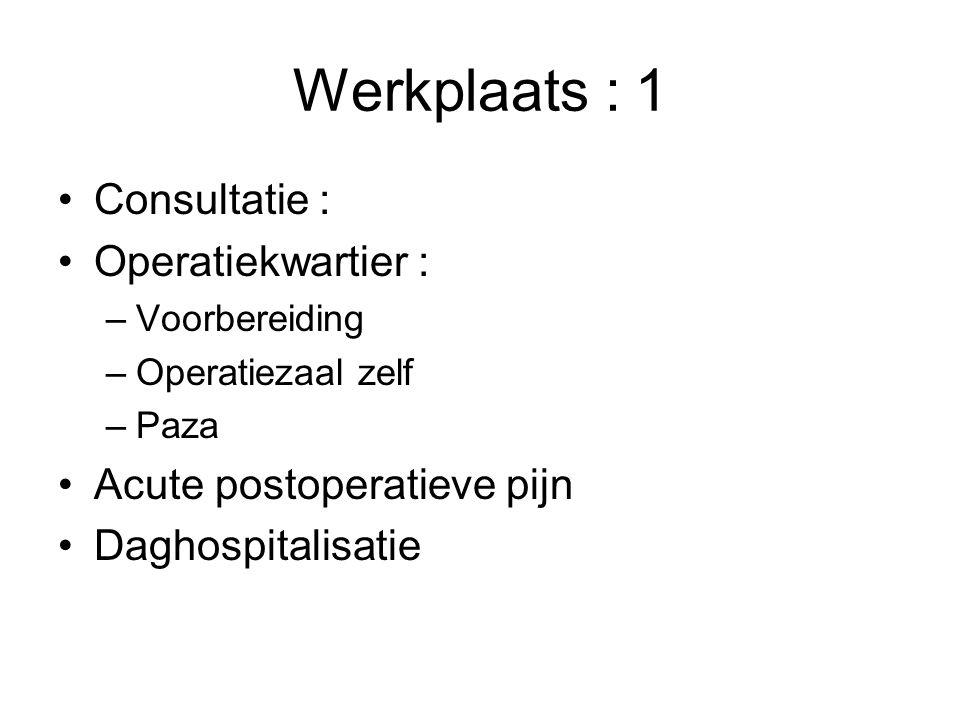 Werkplaats : 1 Consultatie : Operatiekwartier : –Voorbereiding –Operatiezaal zelf –Paza Acute postoperatieve pijn Daghospitalisatie