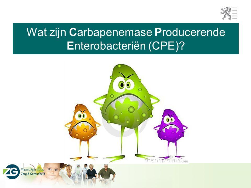 Wat zijn Carbapenemase Producerende Enterobacteriën (CPE)?